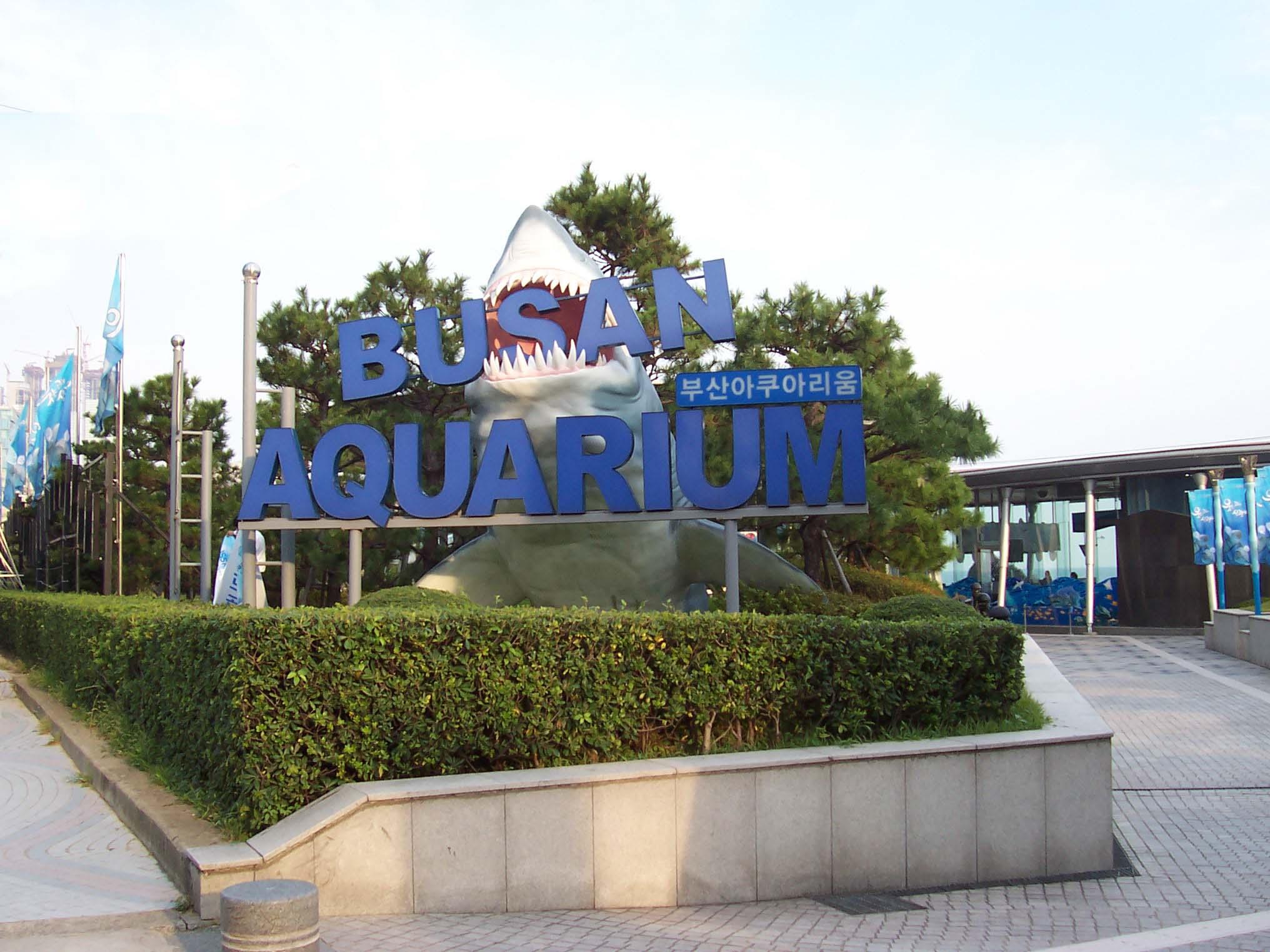 File:Busan Aquarium.jpg - Wikimedia Commons