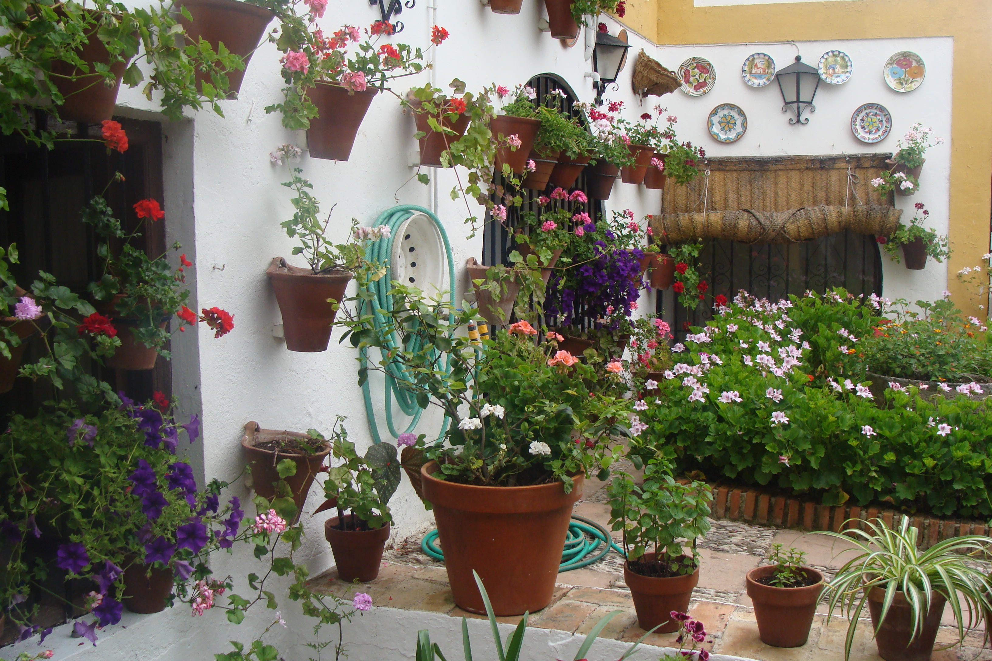File C³rdoba Festival de los patios Wikimedia
