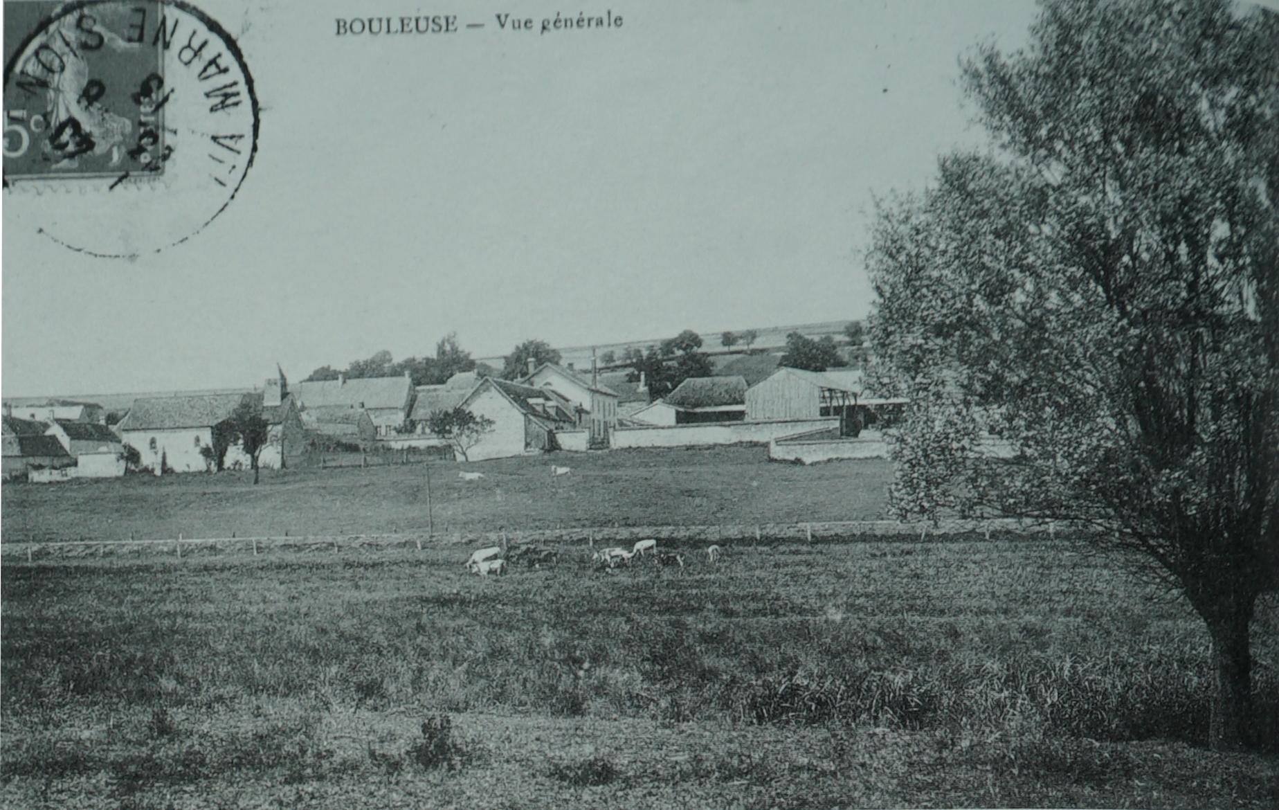 Bouleuse
