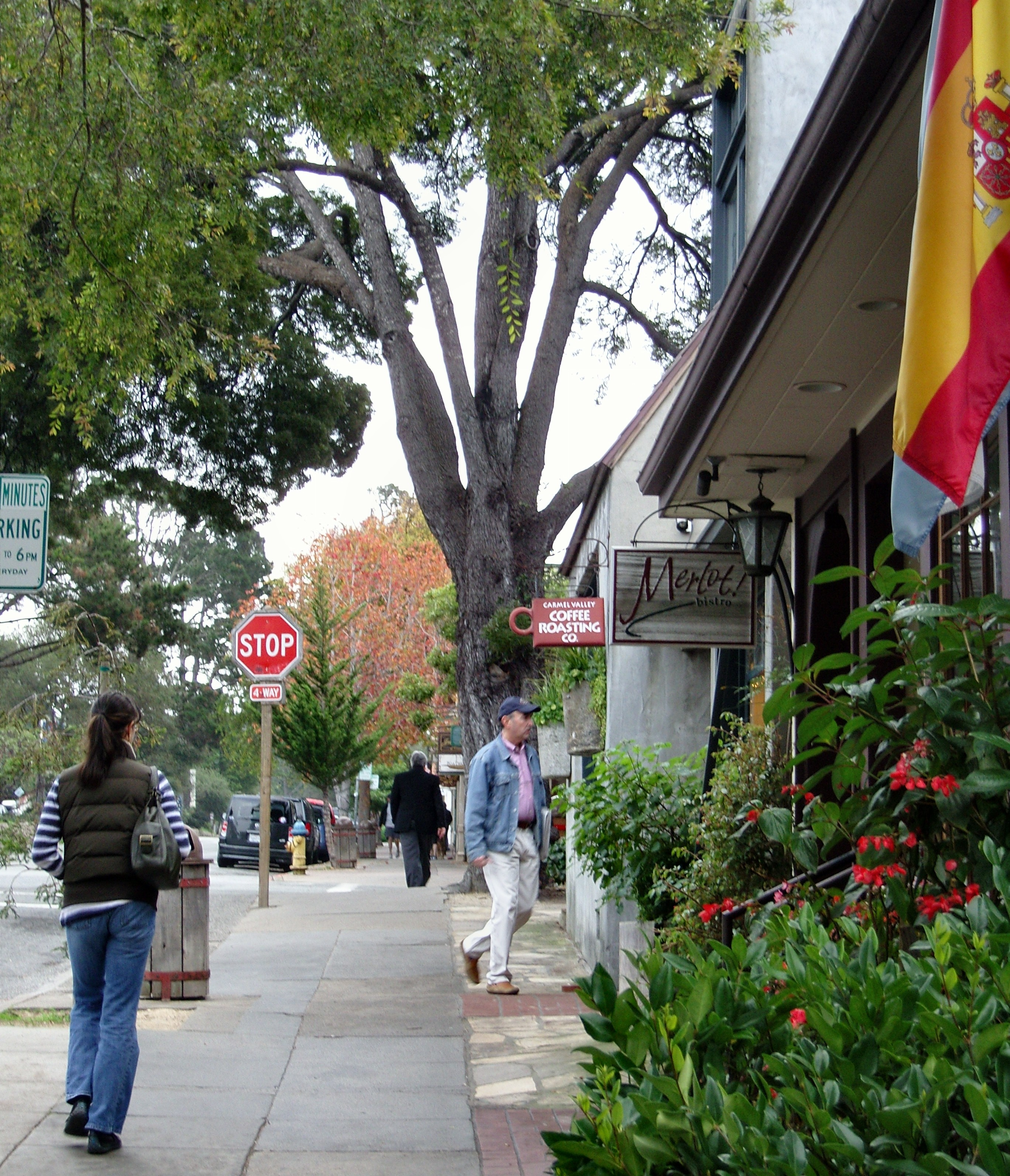 Carmel California Hotels Dog Friendly