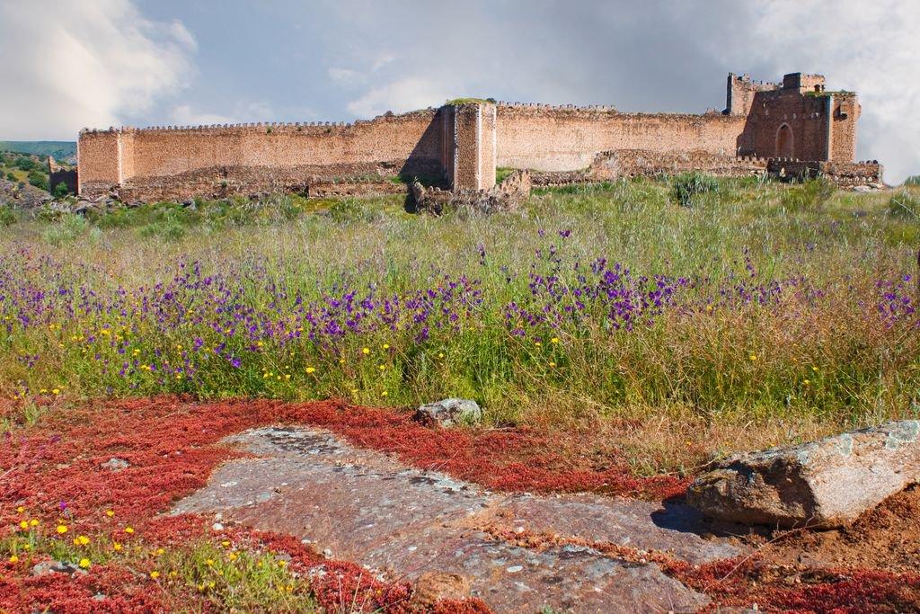 Castillo de montalb n wikipedia la enciclopedia libre - Castillo de azay le rideau ...