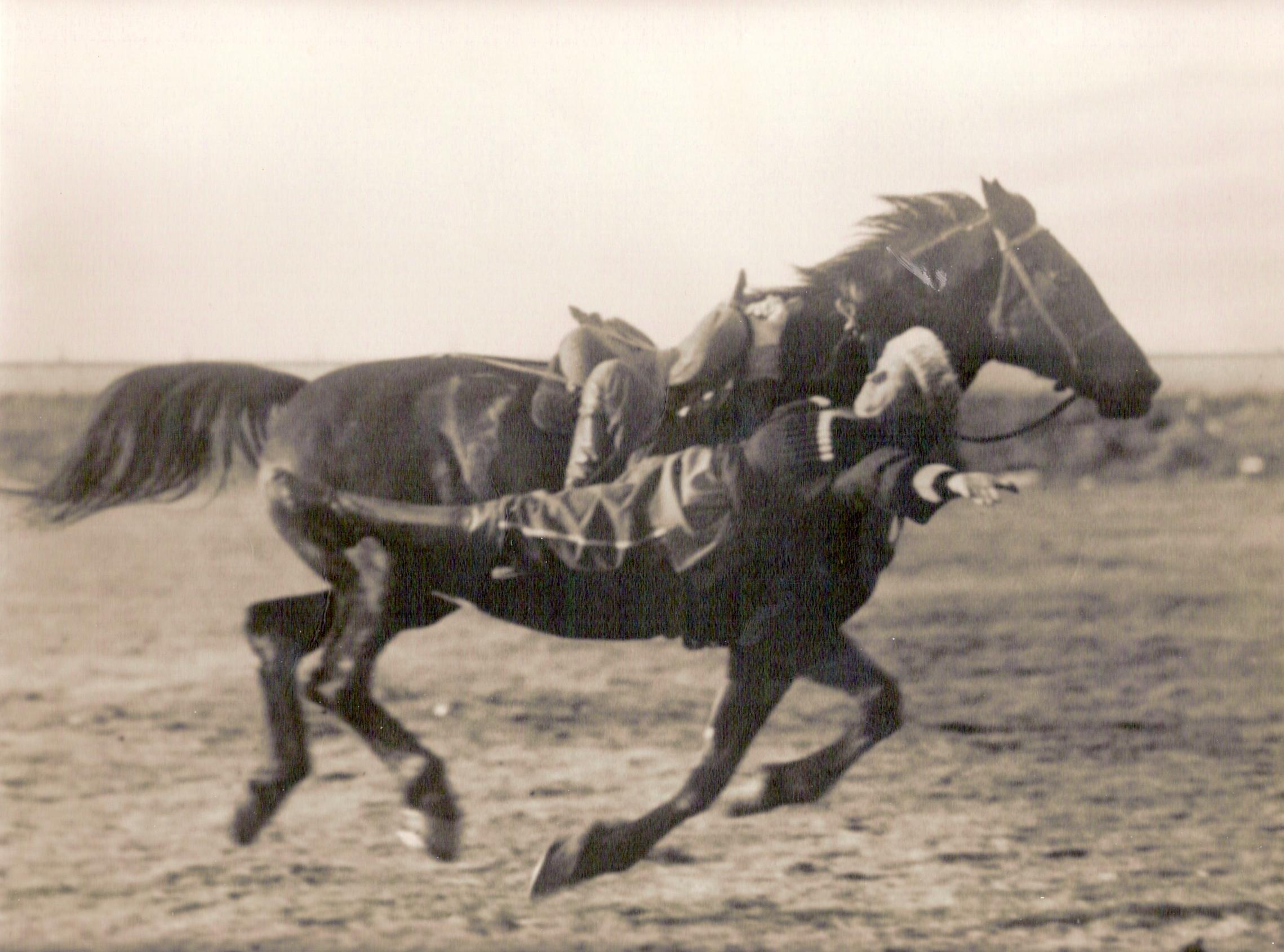Кредит на развитие лошадей