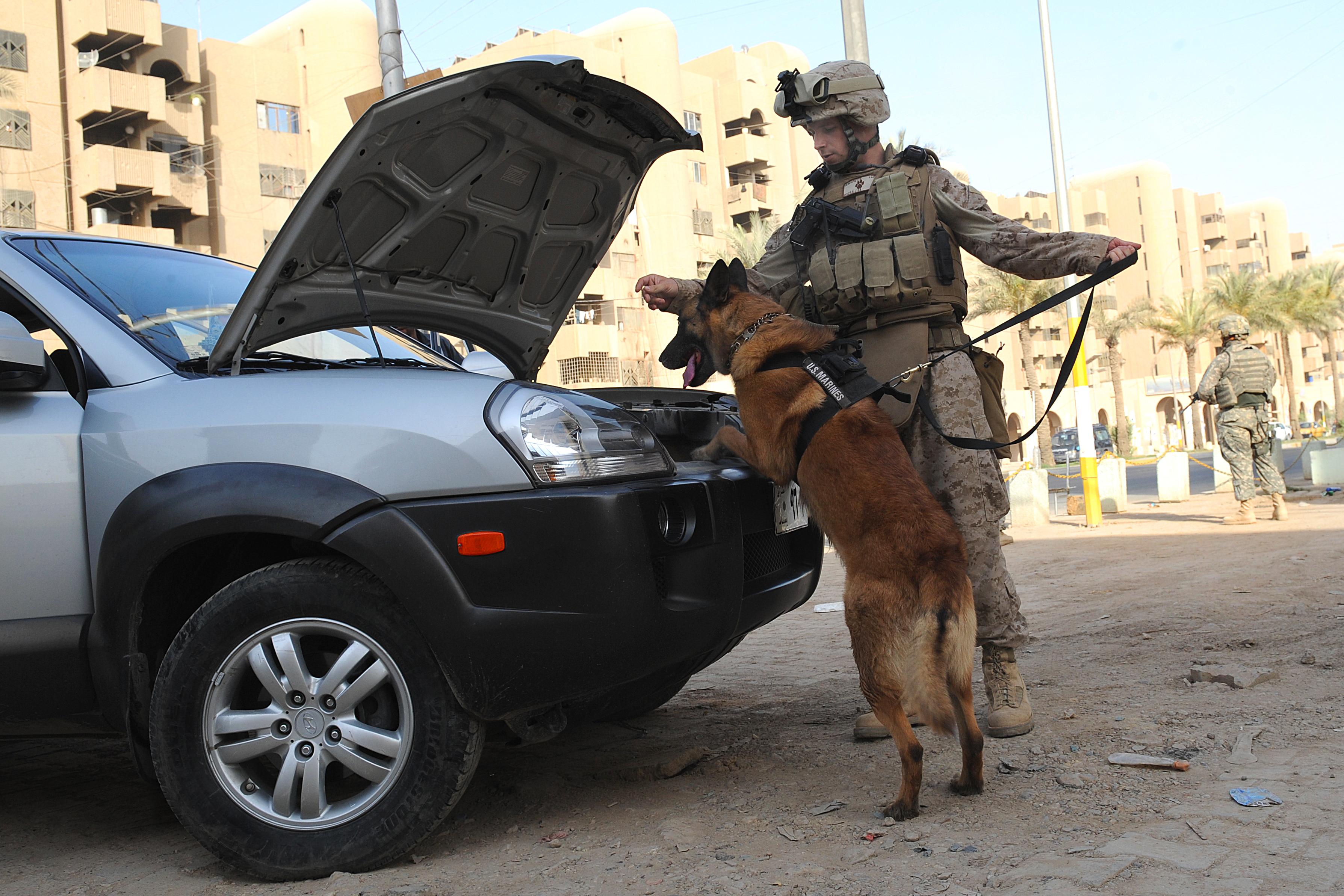 File:Defense.gov Photo Essay 090625-A-6401B-097.jpg