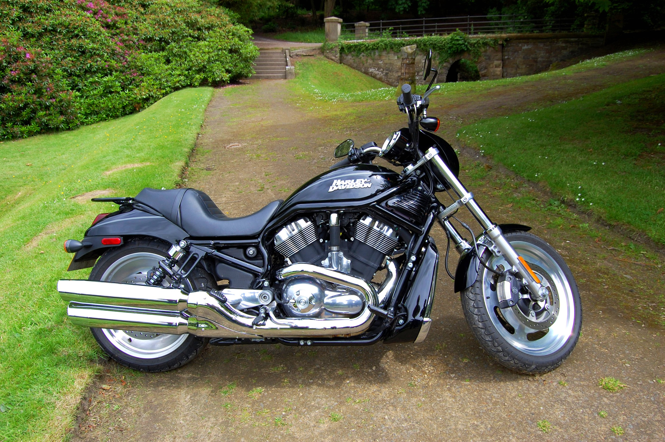 File:Flickr - ronsaunders47 - HARLEY- DAVIDSON. VRSC 1250 CC. V TWIN