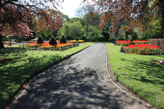 File:Flower gardens in Pearson Park - geograph.org.uk - 1273613.jpg