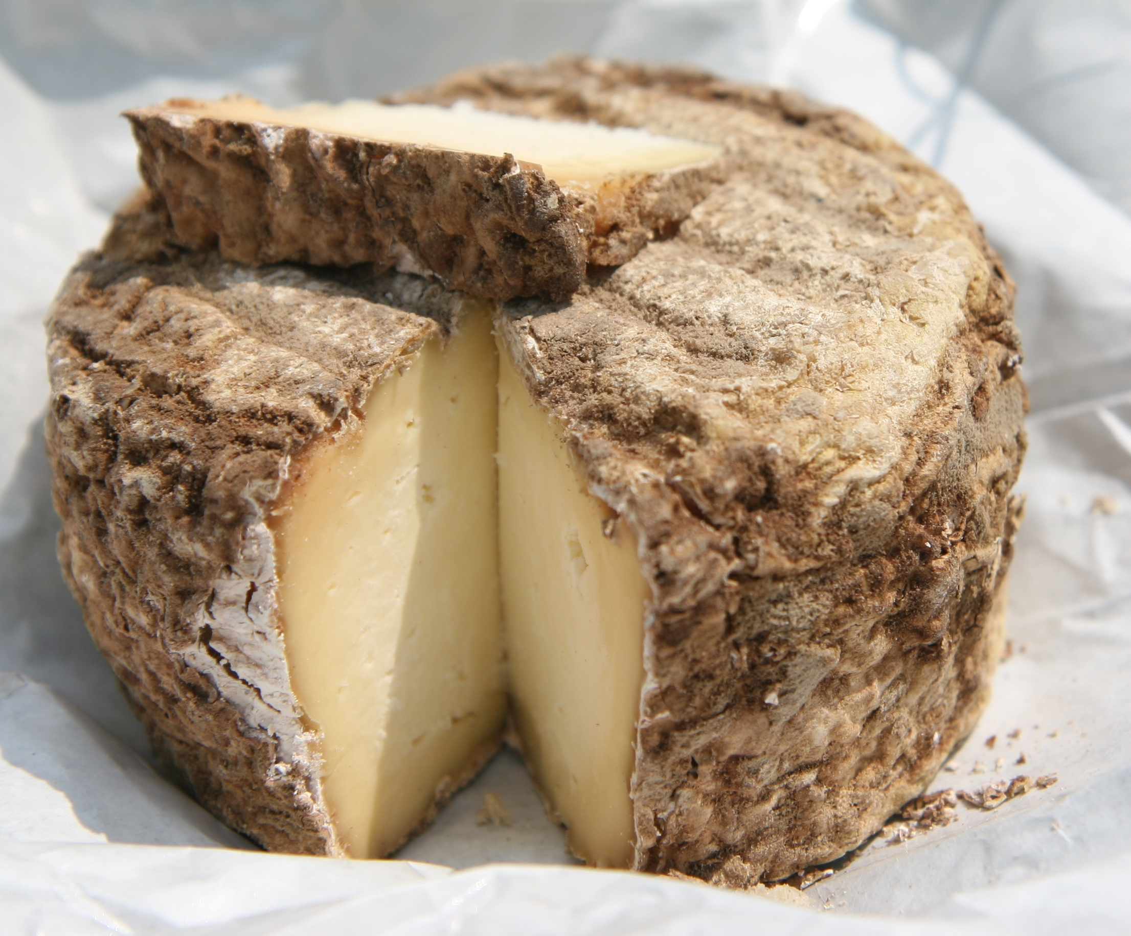 acarien fromage