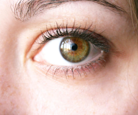File:Hazel-green eye.jpg - Wikimedia Commons