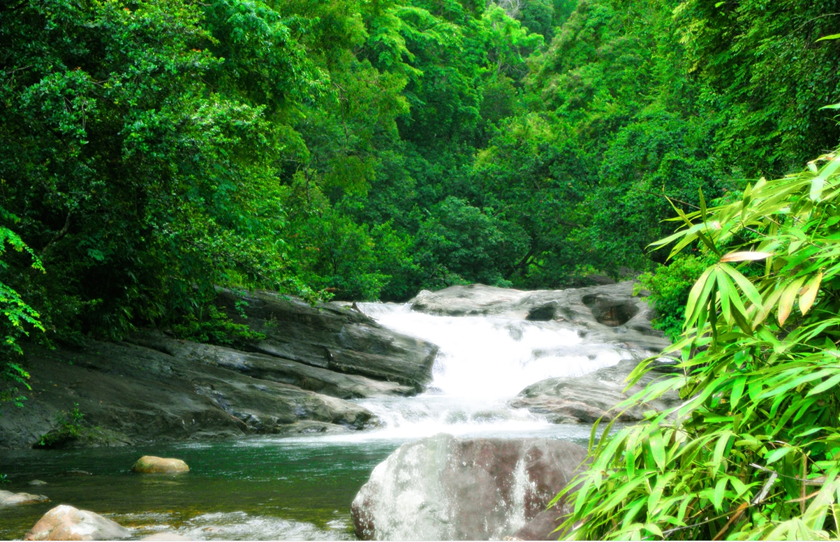 Meenmutty Falls during monsoon