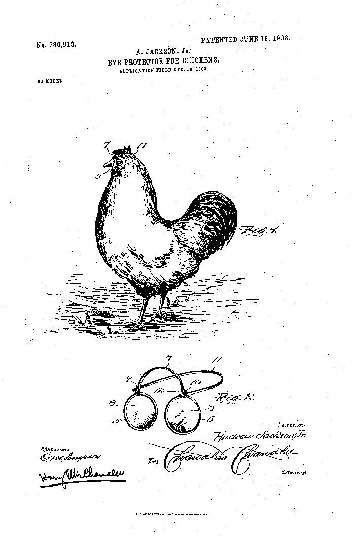 Chicken eyeglasses - Wikipedia