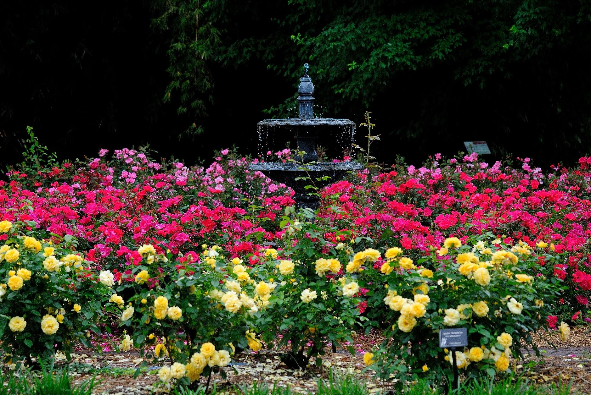Coastal Georgia Botanical Gardens Wiki Everipedia
