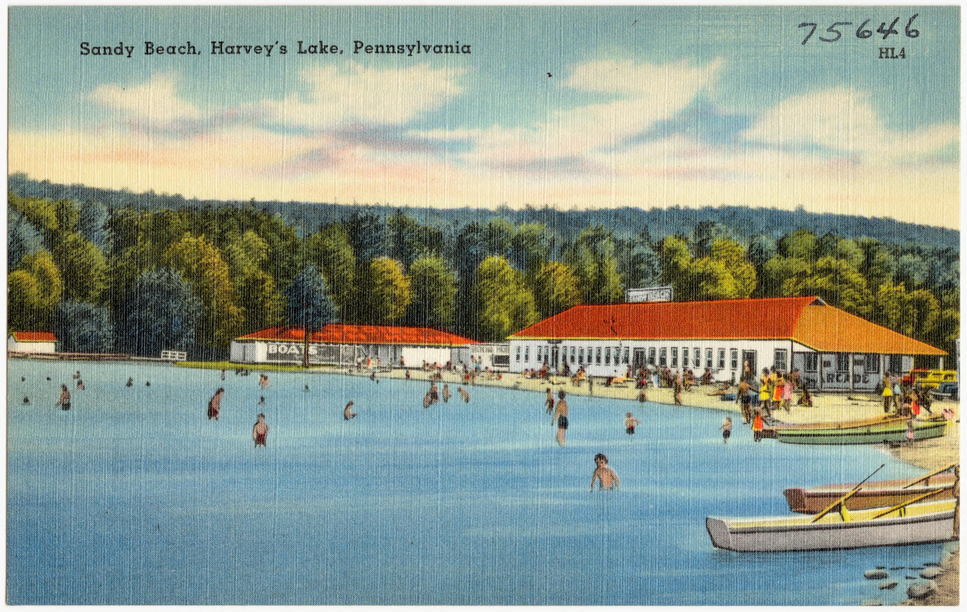 Escorts in harveys lake pa