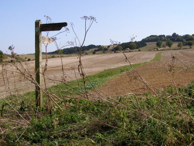 Signpost on the Clarendon Way - geograph.org.uk - 236909
