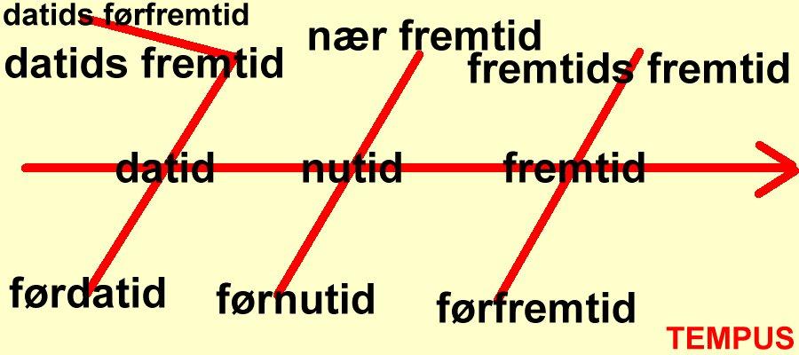 udsagnsord på latin