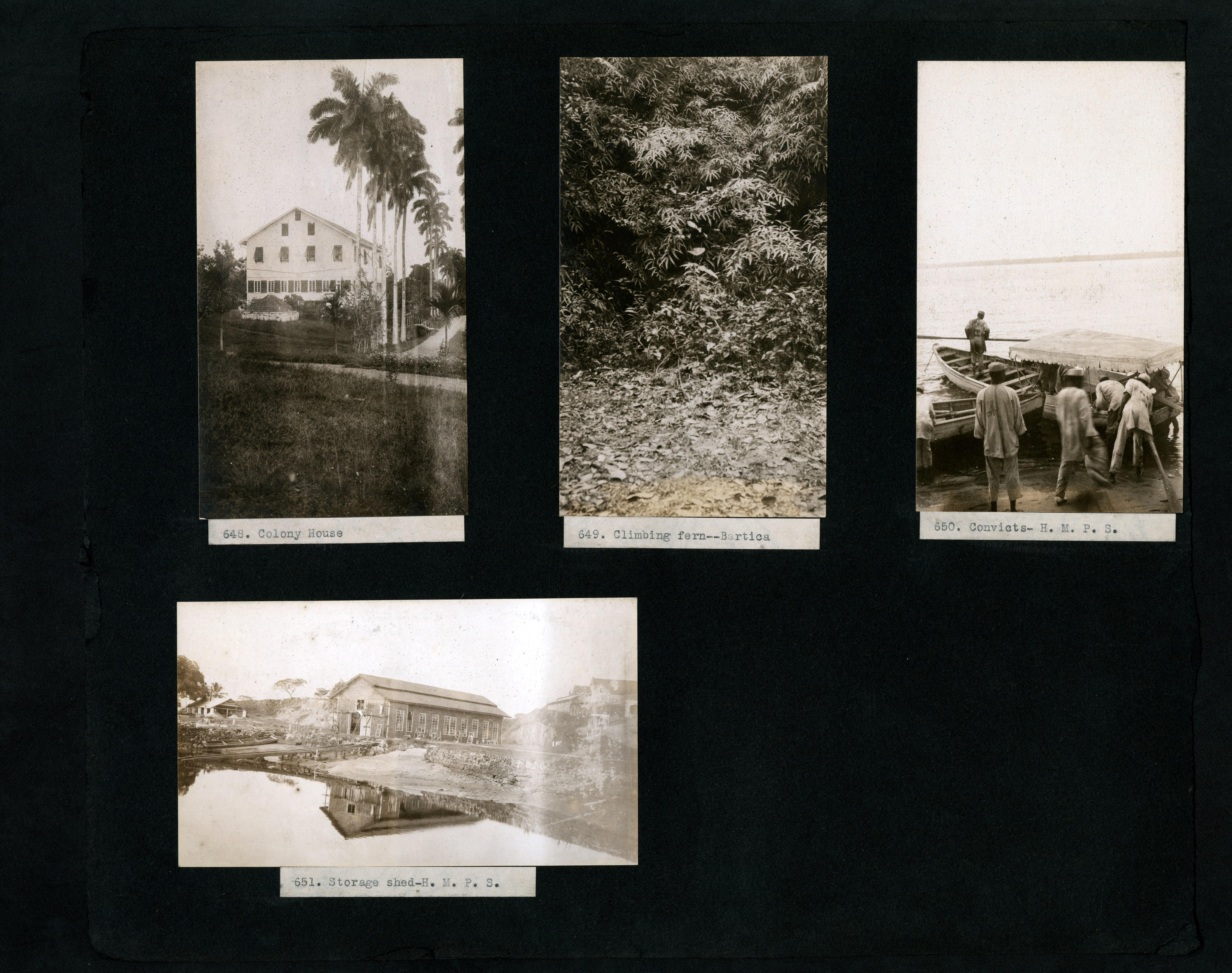 File:587--778; -1316A--1448 A. A. S. Hitch - British Guiana ... on