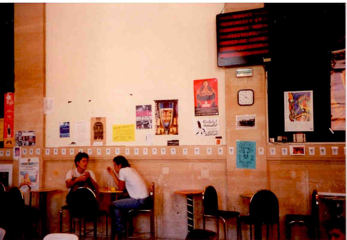 File 84 Tetes De Boeuf Aquarelle Affichees Dans La Cafeteria Des