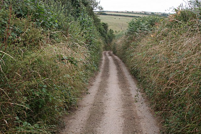 File:A Very Narrow Road - geograph.org.uk - 215950.jpg