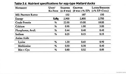 Balut Egg Nutrition