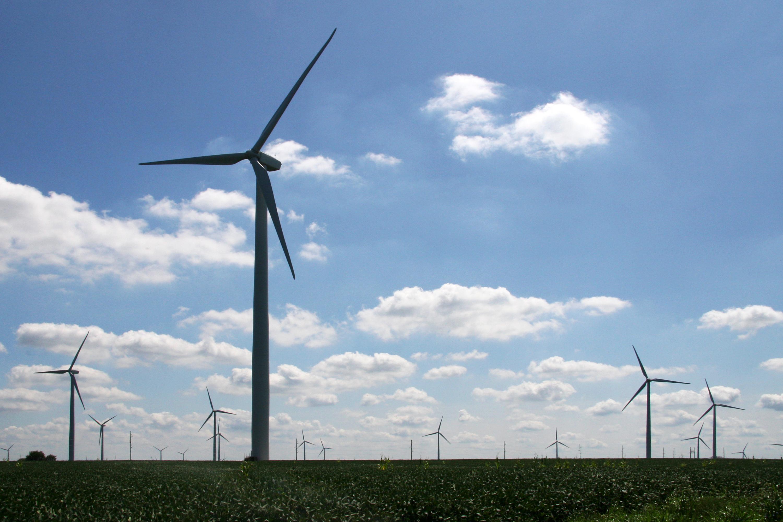 Iowa Wind Farms Fowler Ridge Wind Farm