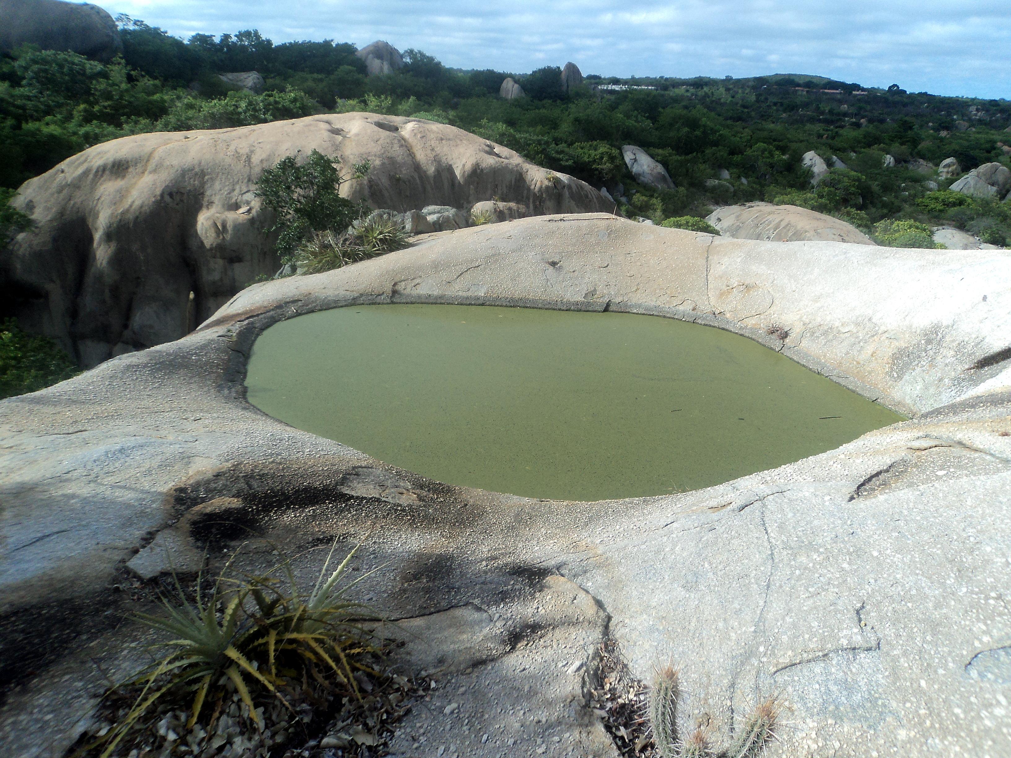 Brejinho Pernambuco fonte: upload.wikimedia.org
