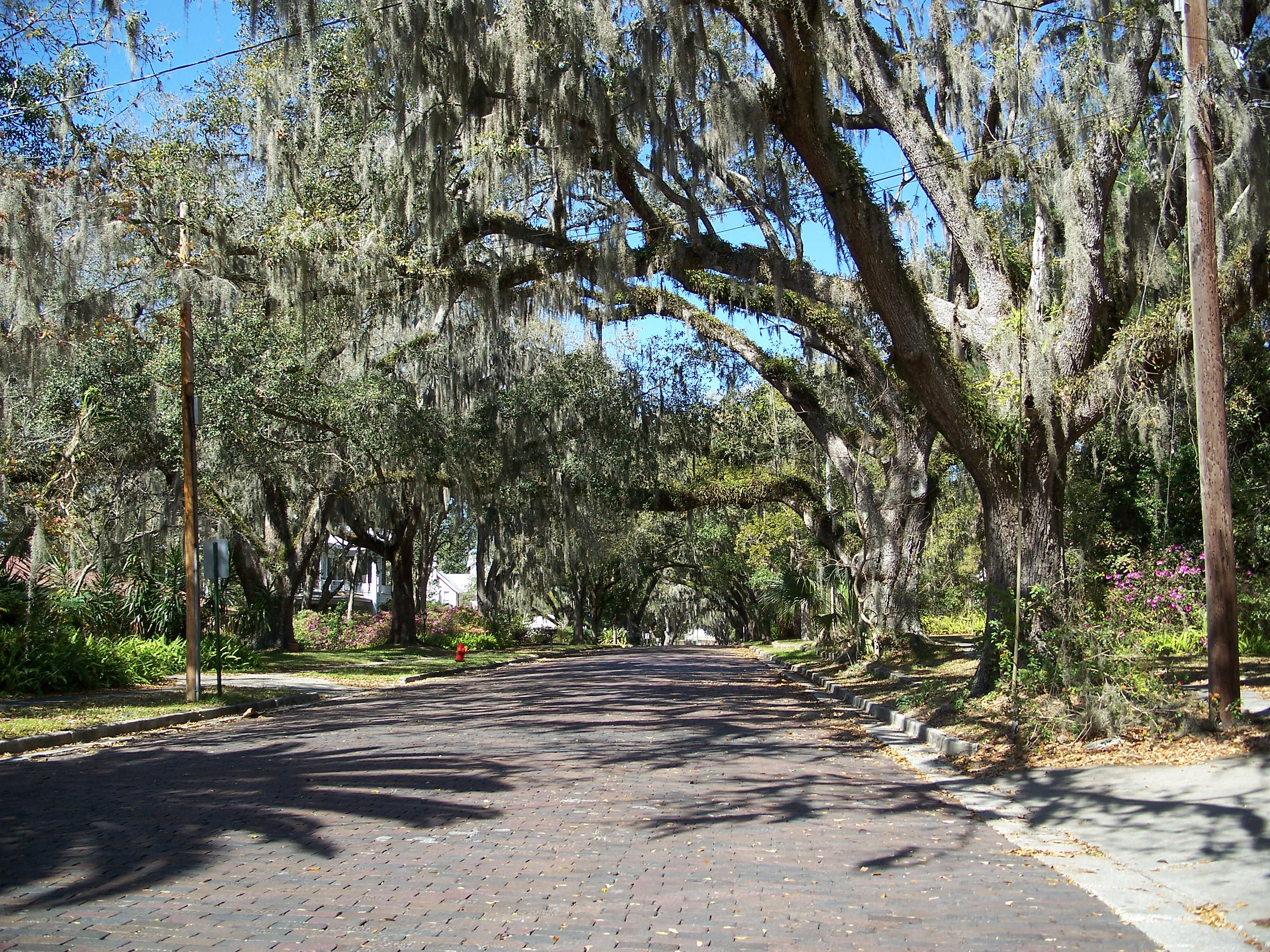 File brooksville hist dist wikimedia commons for Sheds brooksville fl