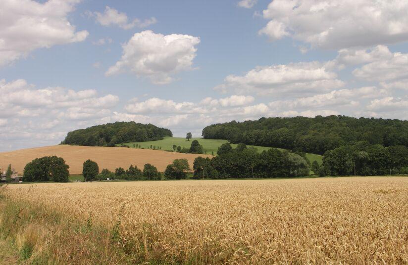 Bubenik (hill)