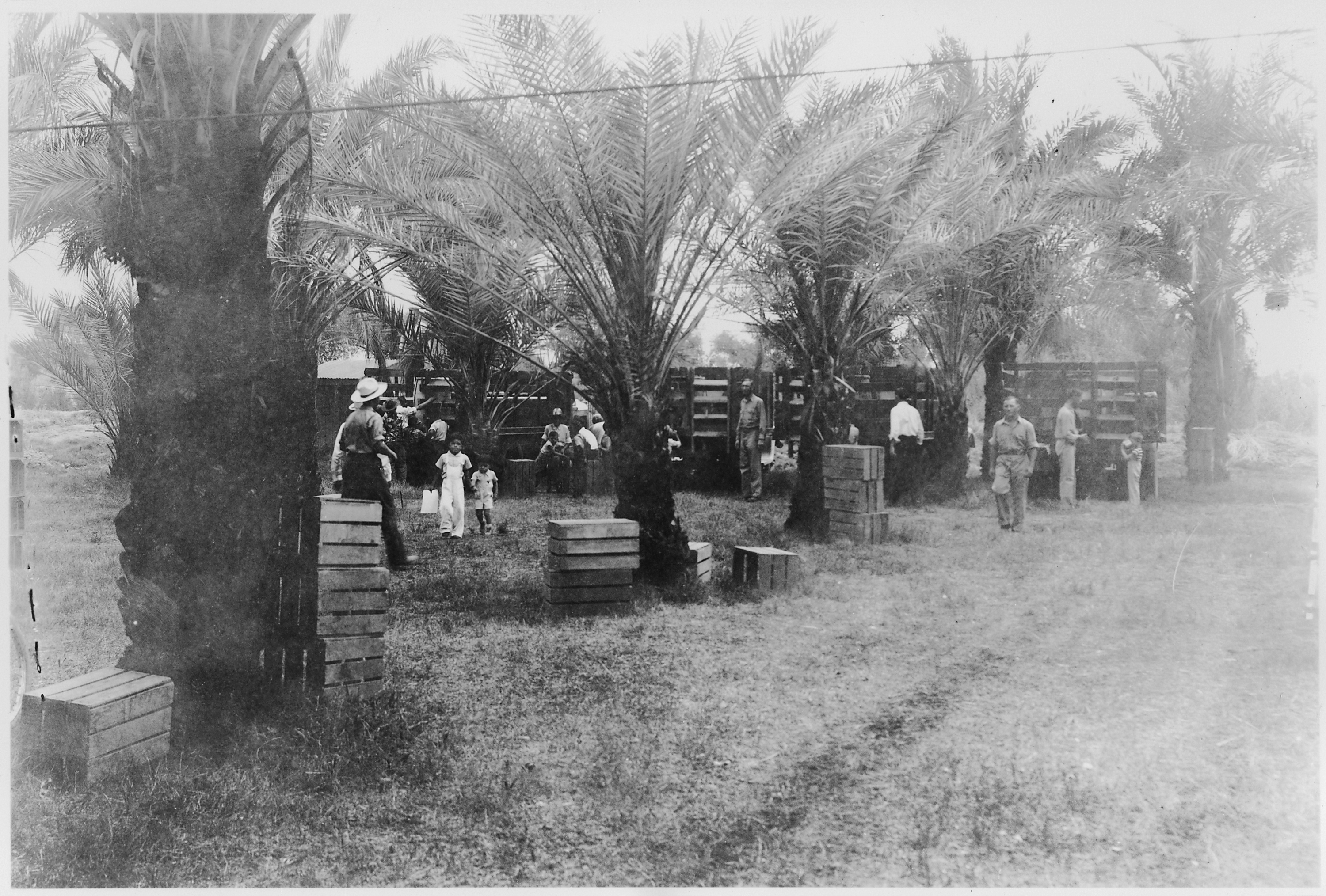 Arizona yuma county gadsden - File Ccc Camp Br 74 Yuma Project Gadsden Park Arizona Photo Of