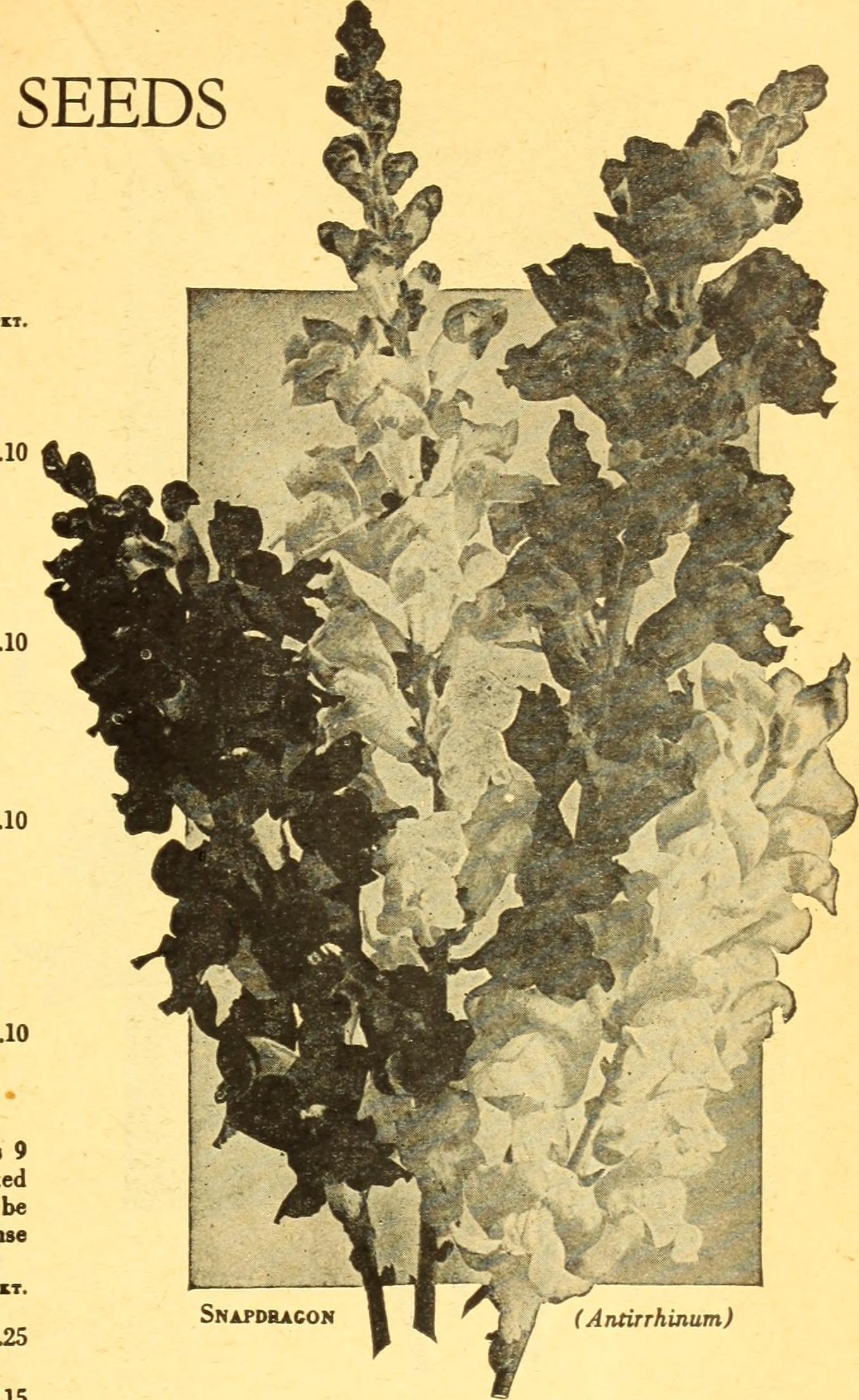 File:California Gardening (1934) (20326743298)