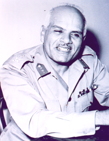 Egyptian Chief of Staff Ali Ali Amer.png