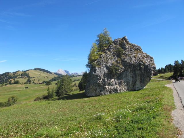 Erratischer Dolomit-Block Cionstoan Seiseralm