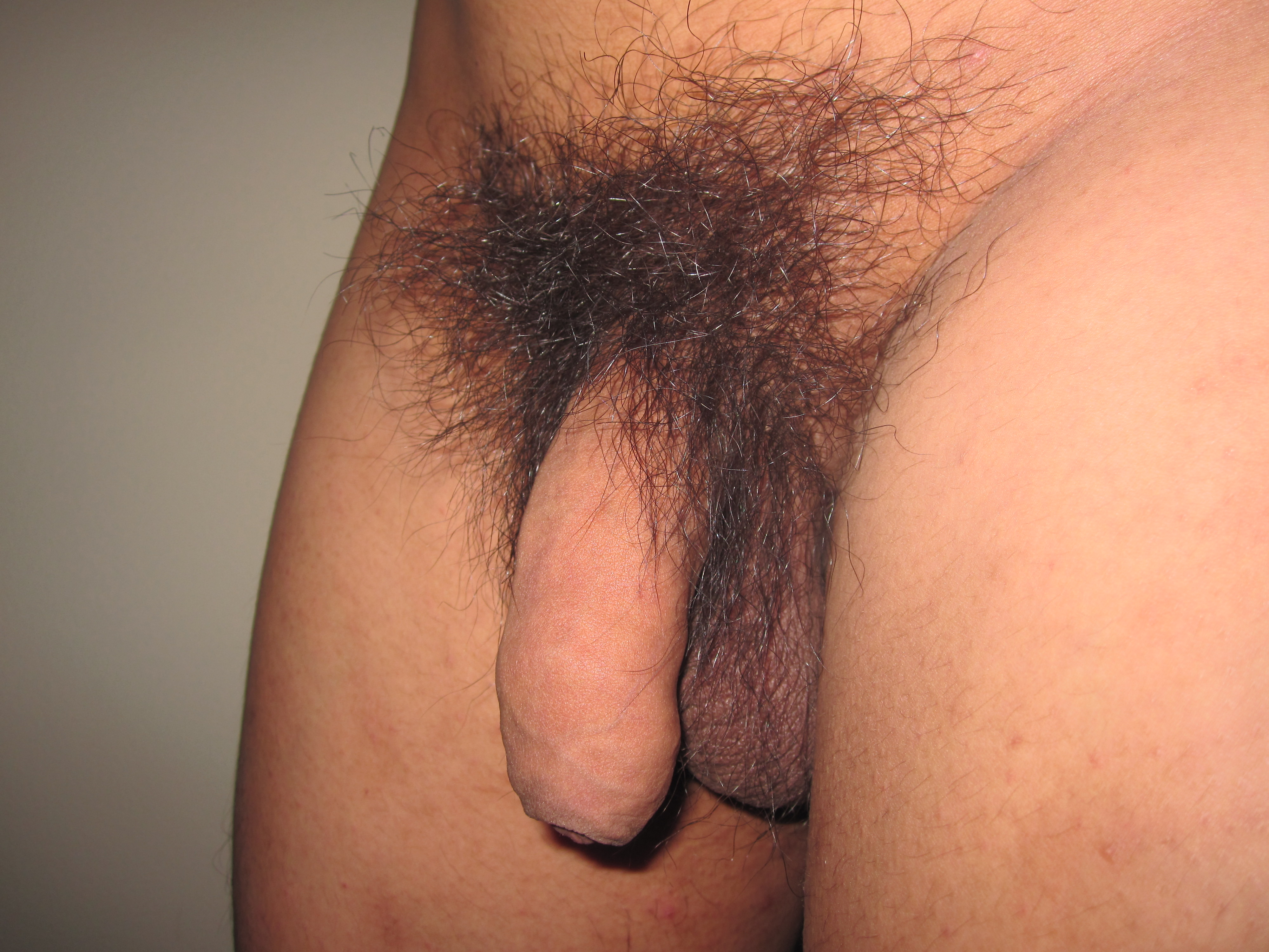 penis pictures with pubic hair jpg 422x640