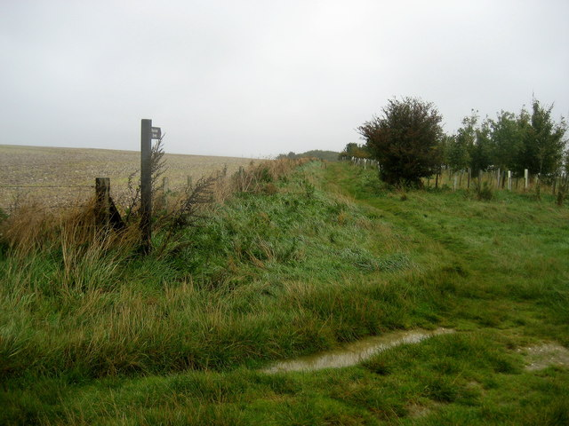 File:Footpath on East Hendred Down - geograph.org.uk - 1005119.jpg