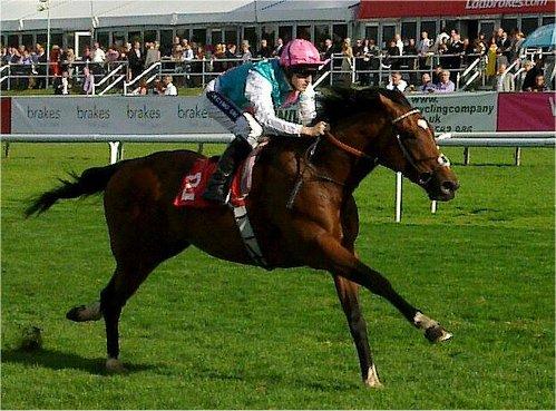 Frankel (horse) - Wikipedia