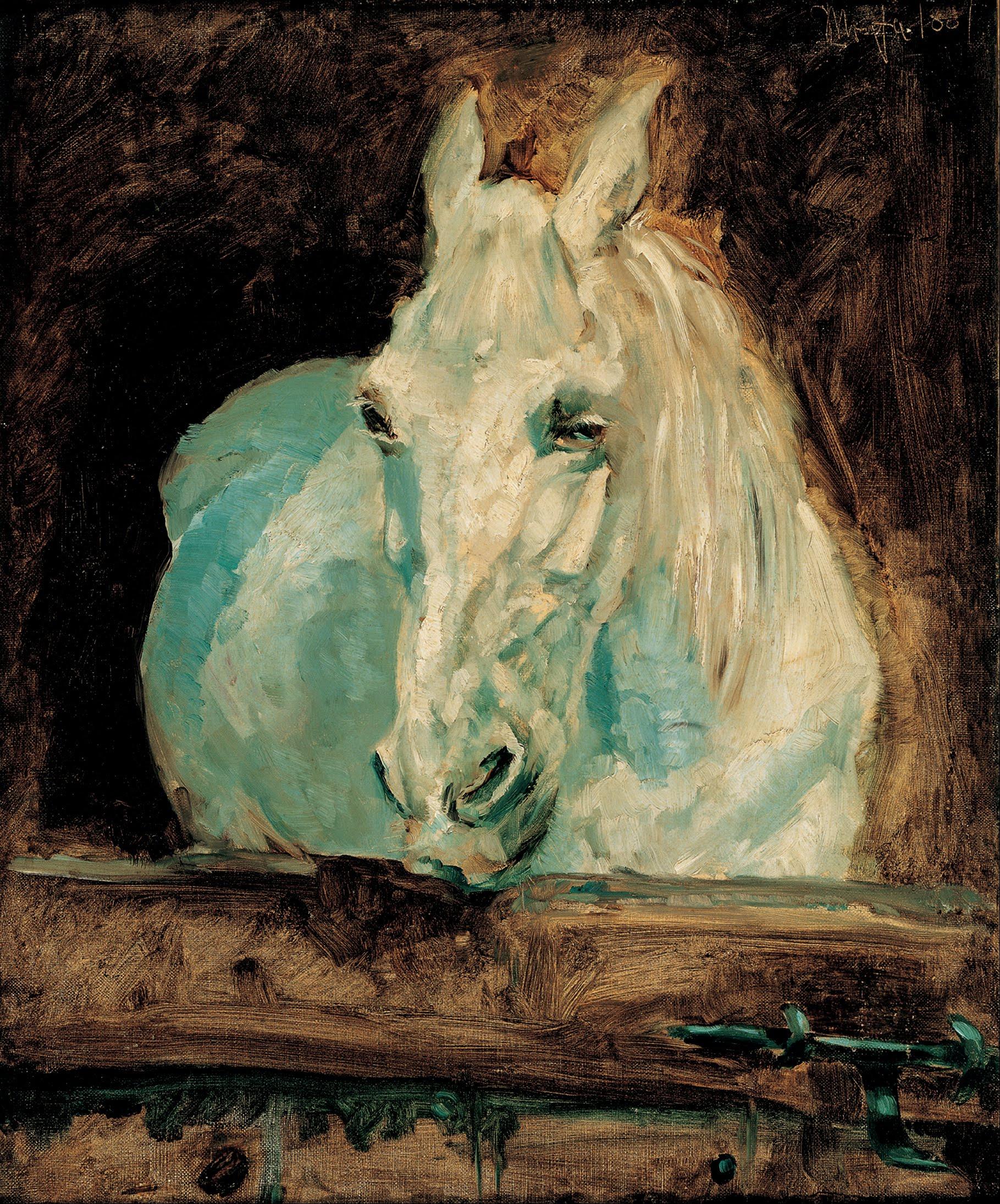 file henri toulouse lautrec the white horse gazelle 1881 google art. Black Bedroom Furniture Sets. Home Design Ideas
