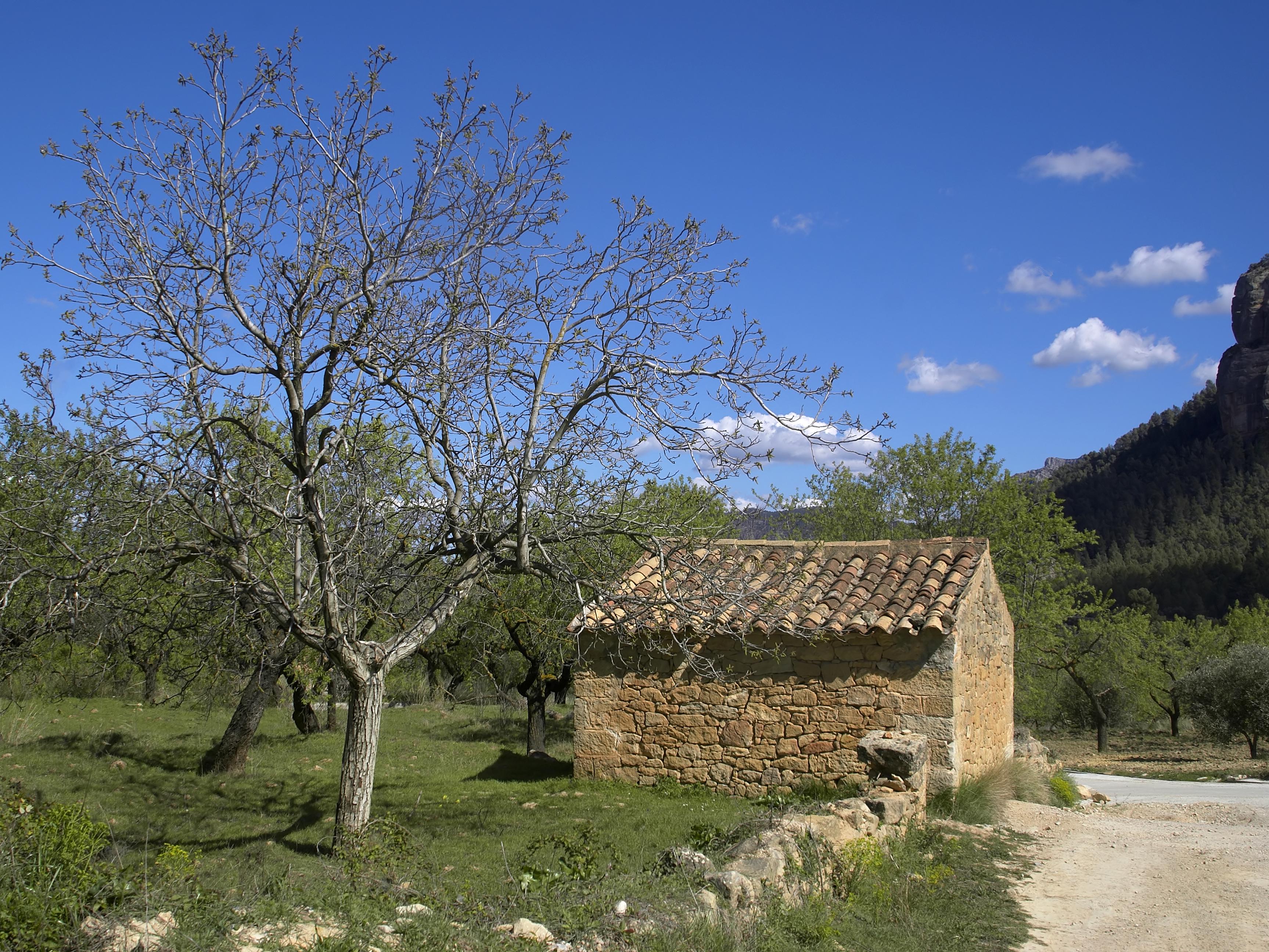 Descripci  N Horta De San Juan   Shed