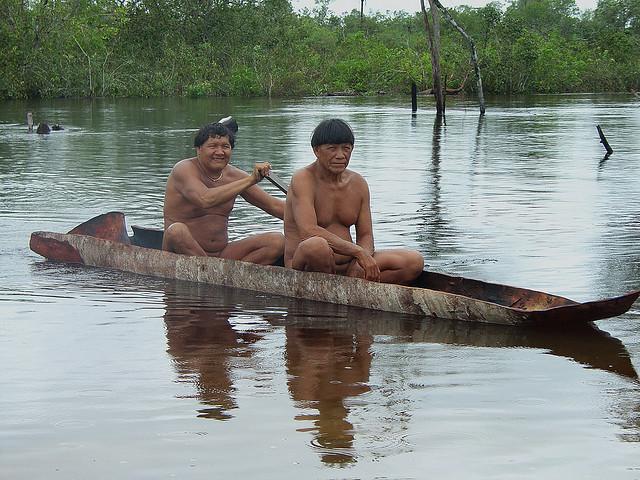 Bildergebnis für indigene völker regenwald