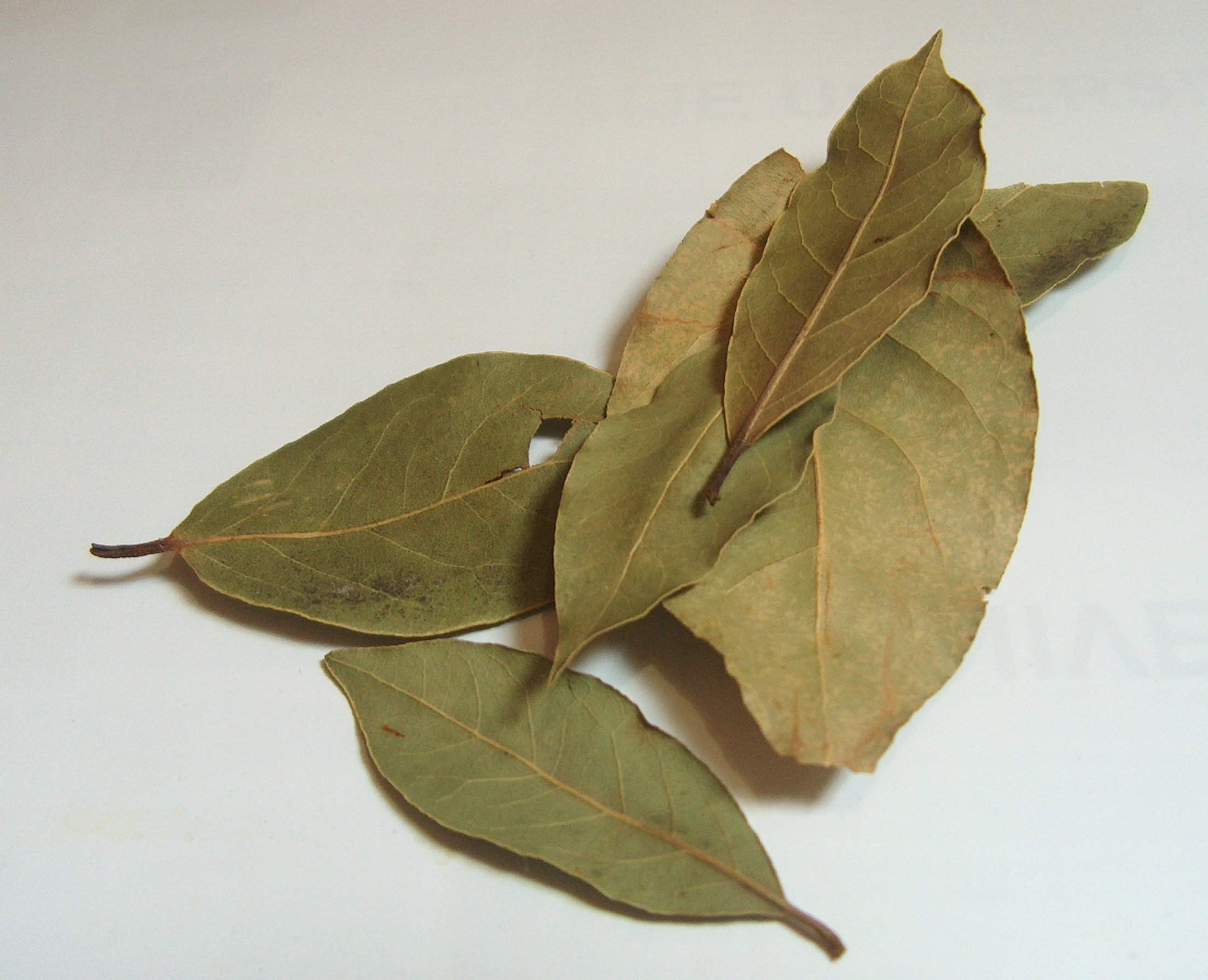 What is Bay Leaf?