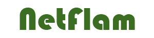 Logo netflam