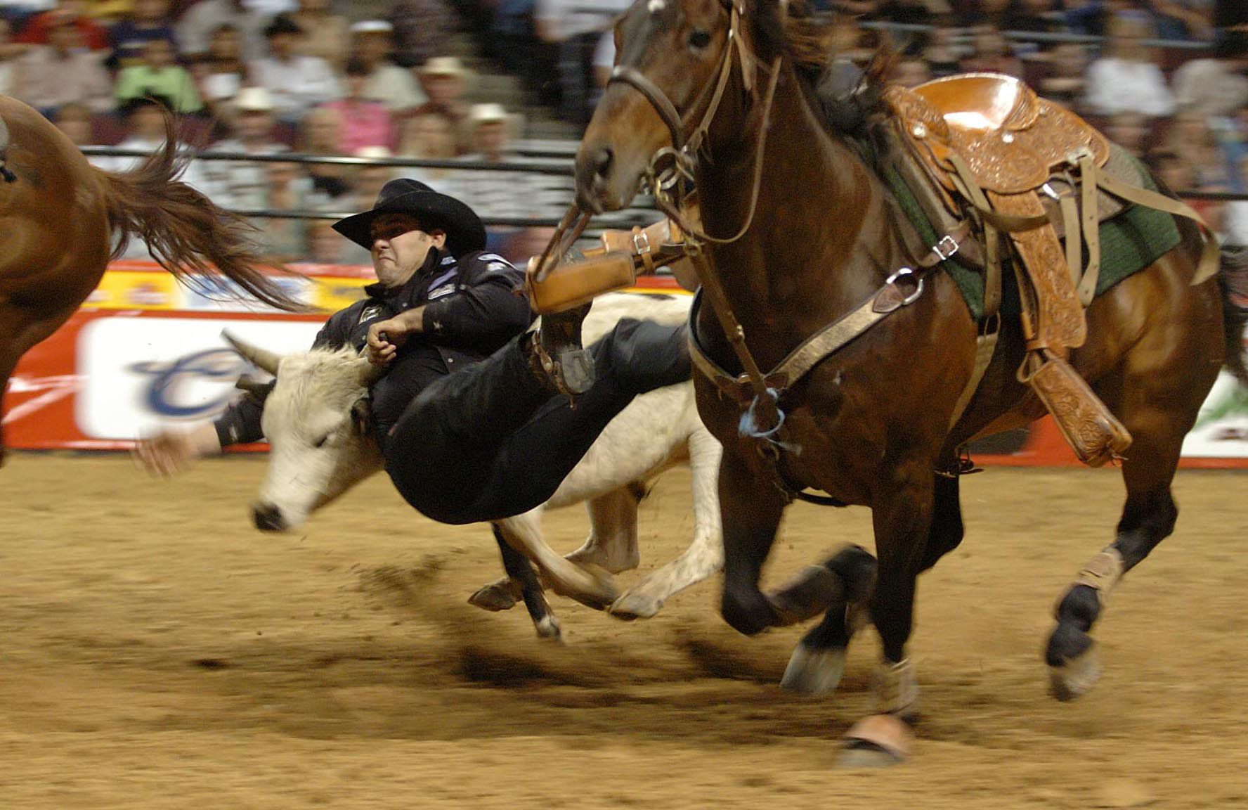 National Finals Rodeo - Wikipedia