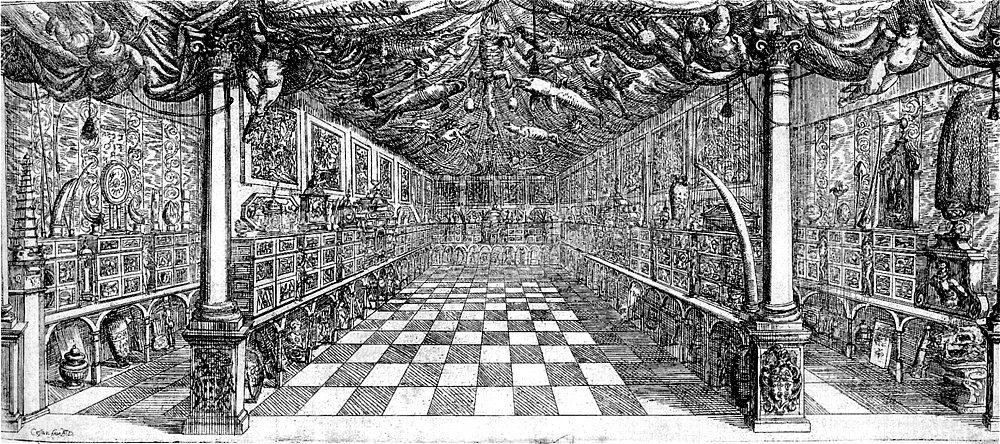 Cabinet of curiosities  Wikipedia