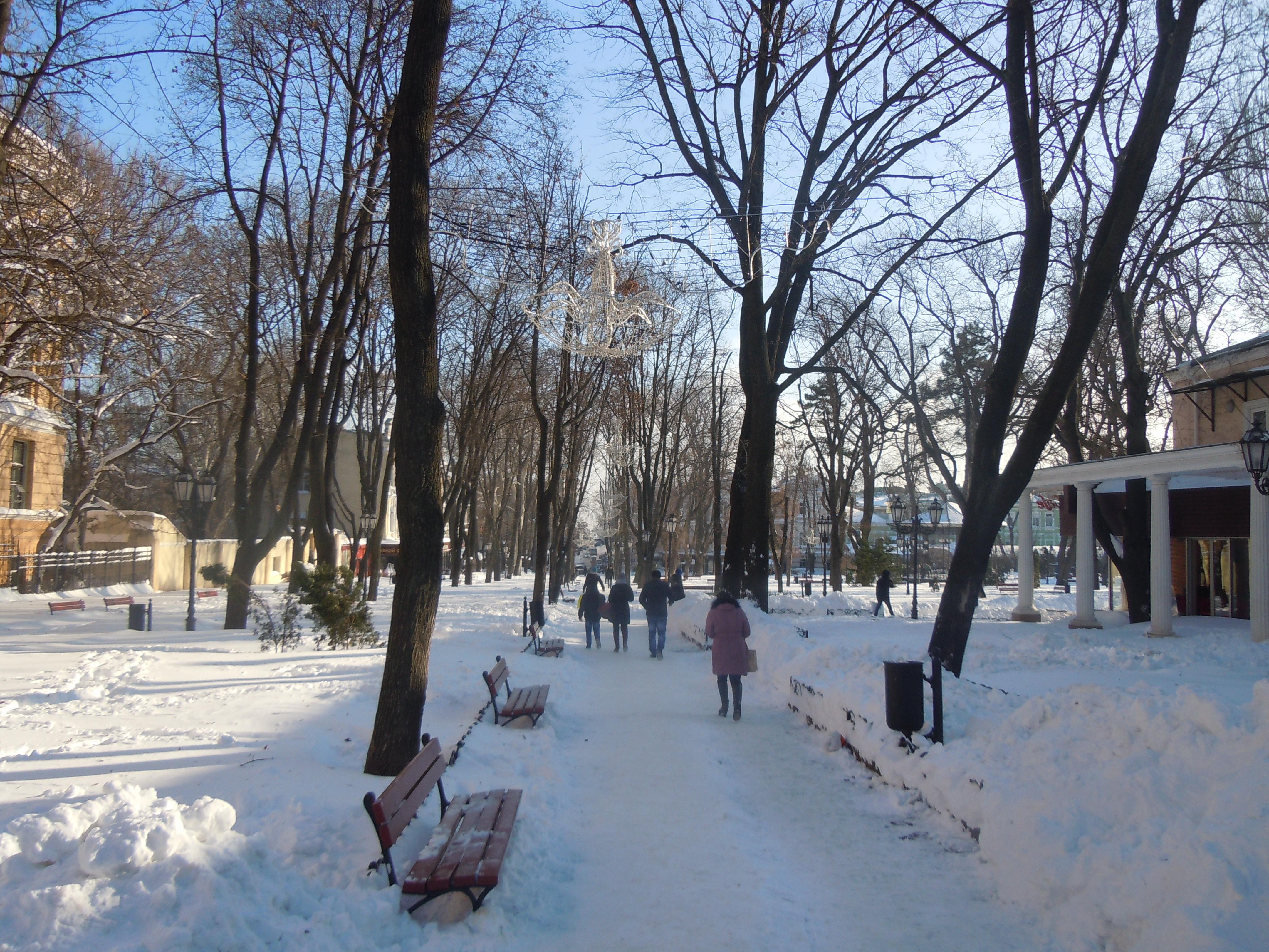 file odessa city garden winter jpg wikimedia commons