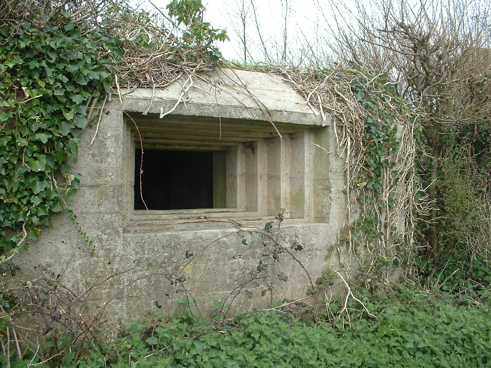 https://upload.wikimedia.org/wikipedia/commons/f/fa/Pillbox_embrasures%2C_Large%2C_on_Taunton_Stop_Line.JPG