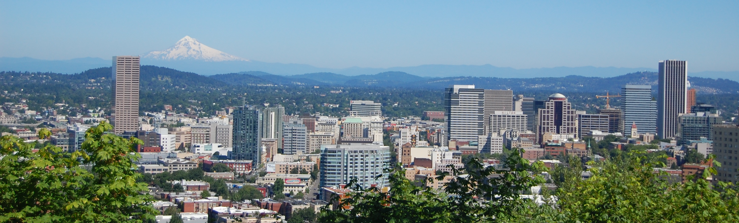 Image result for portland oregon skyline