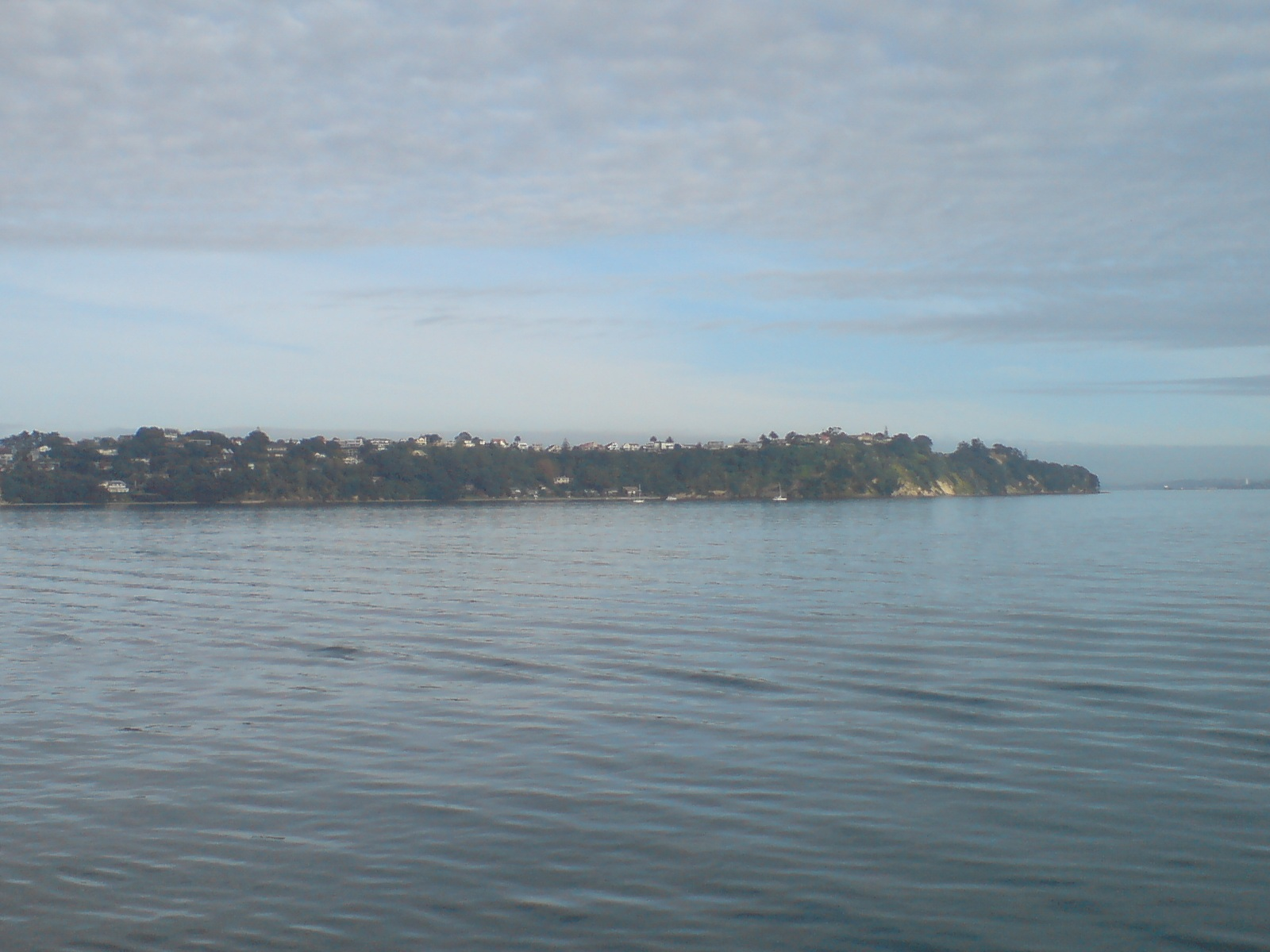 external image Saint_Heliers_In_Auckland.jpg