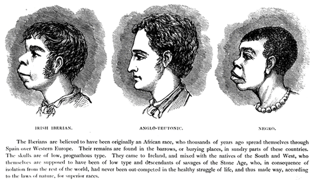 Description Scientific racism irish.jpg