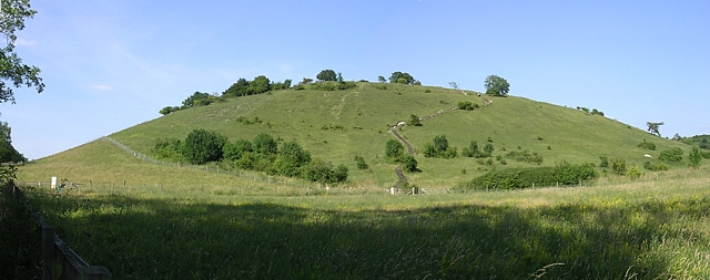 Southern aspect of St Catherine's Hill, Winchester - geograph.org.uk - 25665