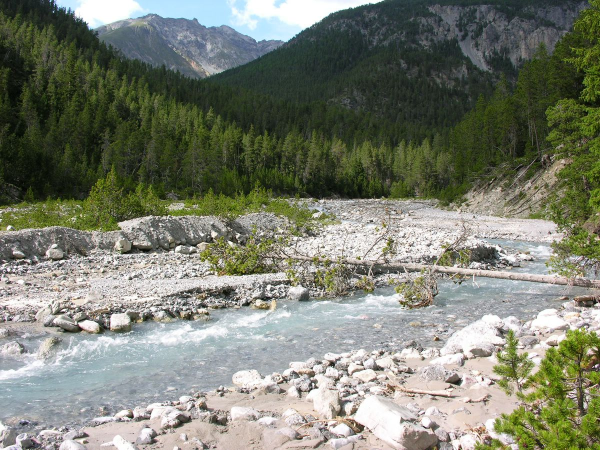 Schweizerischer National Park in the Swiss Alps is a Strict Nature Reserve (Category Ia).