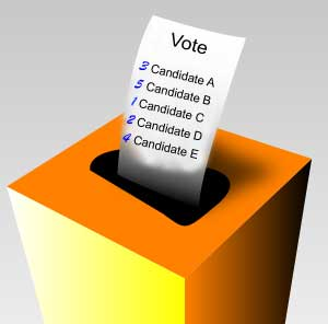 IRV Ballot, From GoogleImages