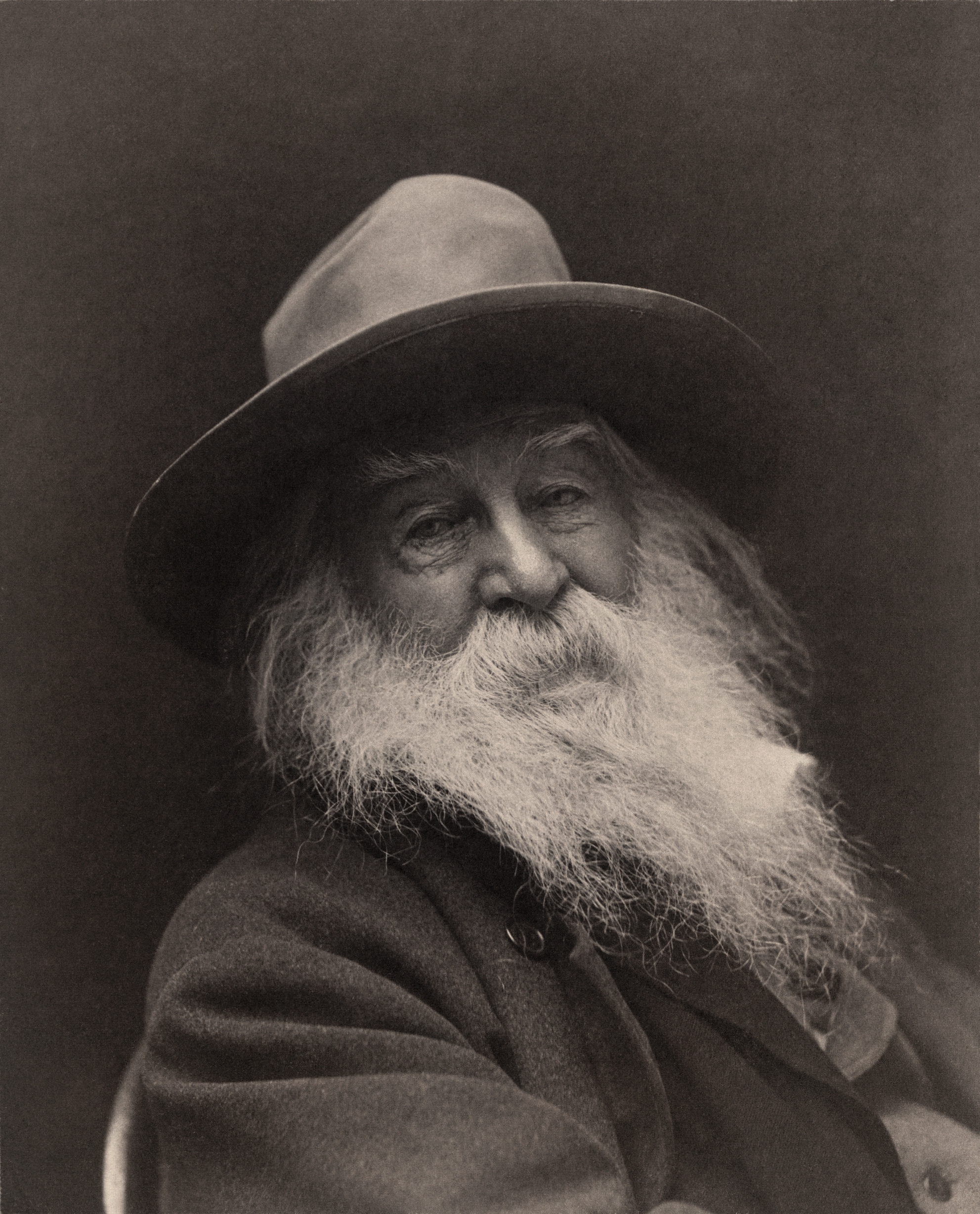 walt whitman walt whitman george collins cox jpg