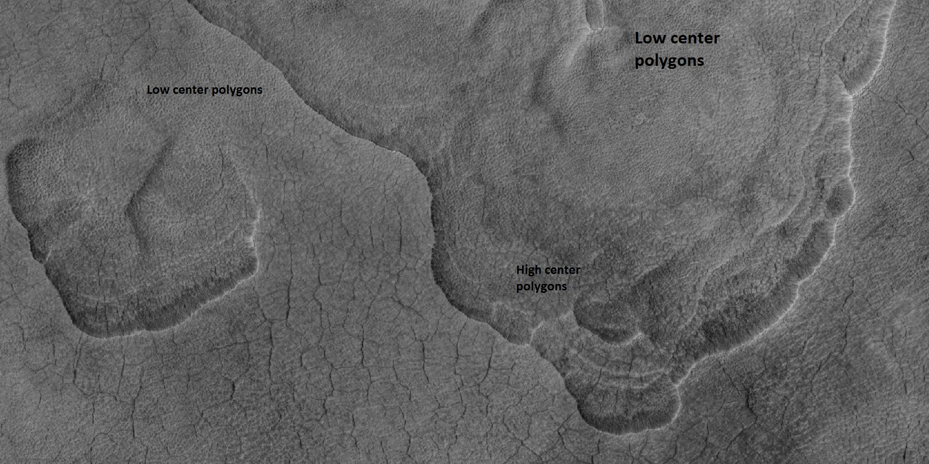 Scalloped terrain labeled with both low center polygons and high center polygons