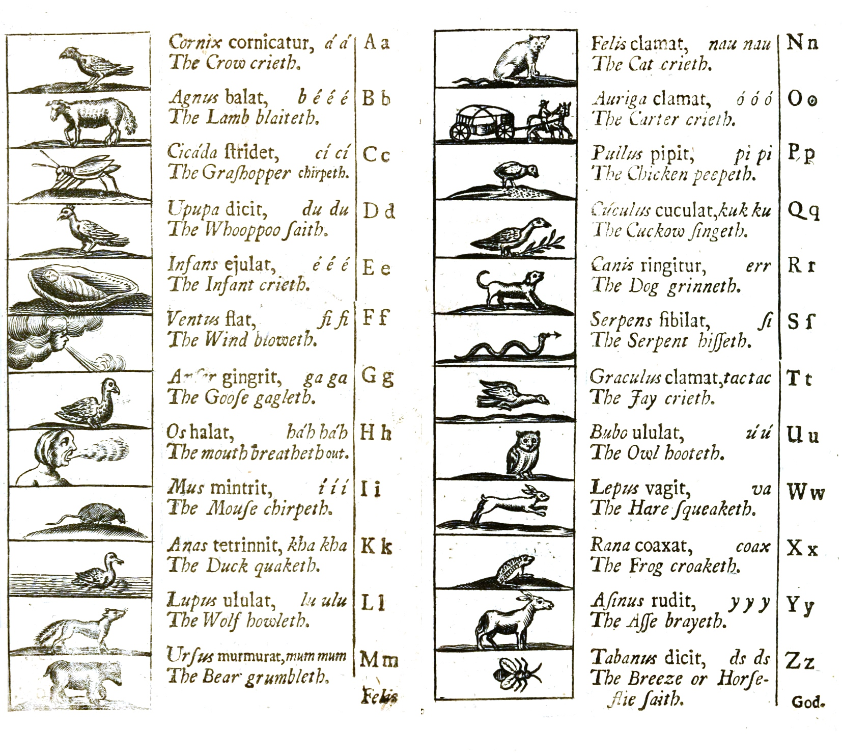 Alphabet Pocket Chart: Alphabet 1705.jpg - Wikimedia Commons,Chart